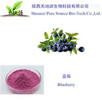 陕西天地源现货供应蓝莓提取物,蓝莓果粉