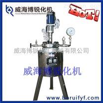 高壓加氫釜 實驗釜