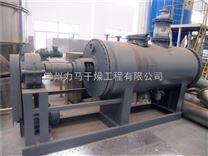 废催化剂甲酸钠和碳酸钠耙式真空干燥机