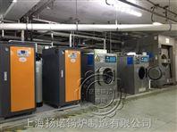 烘干机、水洗机配用电蒸汽锅炉