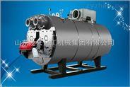 龍興集團燃油熱水鍋爐