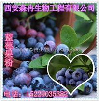 喷雾干燥 蓝莓提取物 蓝莓汁粉 天然食品饮料添加 厂家热销