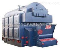 山東龍興廠家生物質蒸汽鍋爐