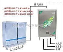 公司新上燃氣蒸汽鍋爐 小型液化氣蒸汽鍋爐