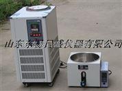 山東低溫恒溫水槽/低溫恒溫反應浴DFY-5/20