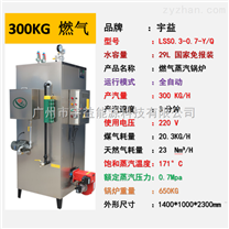 燃氣鍋爐蒸汽發生器300KG/H工業小型鍋爐
