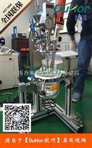 实验室小型真空均质反应釜