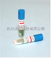 H6305甲醛灭菌生物指示剂