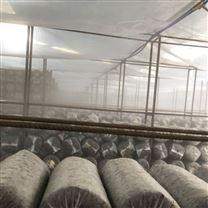 蘑菇大棚加湿设备