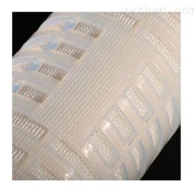 Blueflo™ PFA-F系列耐腐蚀除菌级滤芯