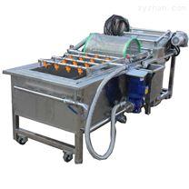 DRT山野菜加工设备流水线