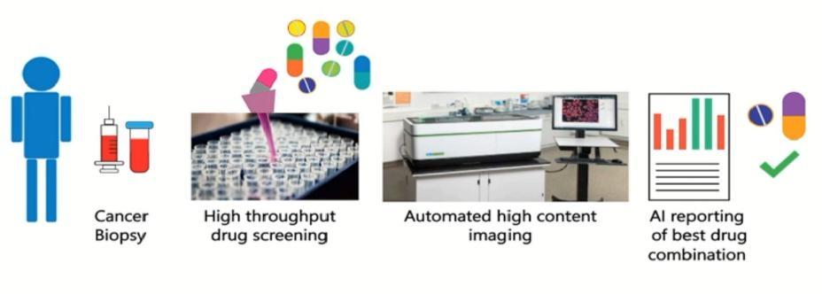 科研干貨 | 3D類器官深層智能成像分析加速精準用藥流程