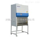 BSC-1500IIA2-X双人半排医用生物安全柜生产厂家
